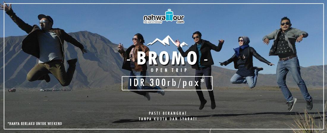 open trip bromo