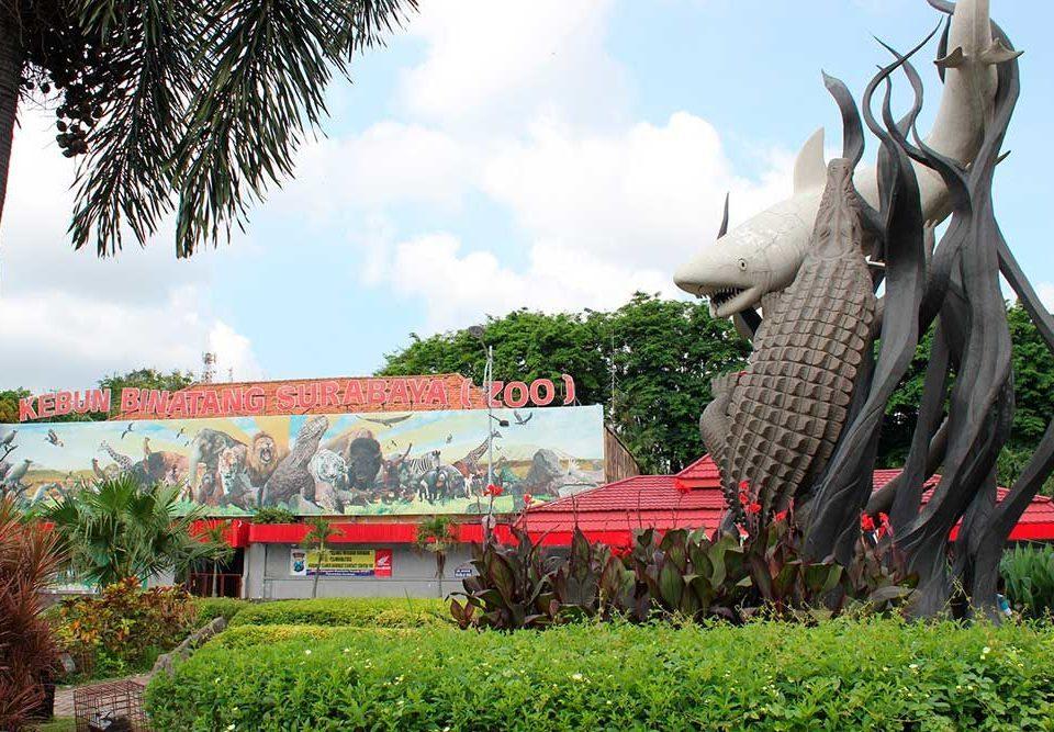 travel malang surabaya - kebun binatang surabaya